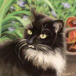 pastel portrait of black cat with white mustache outdoors with coleus plant and green foliage