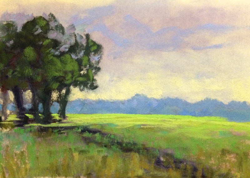 vibrant green marsh grass in morning sun painted in pastel