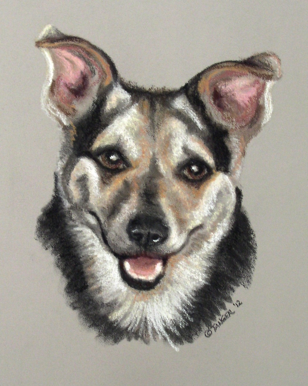 pastel portrait of small dog with ears up