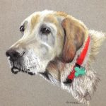 A photo of the final pastel painting of the white lab is sent via email to the client
