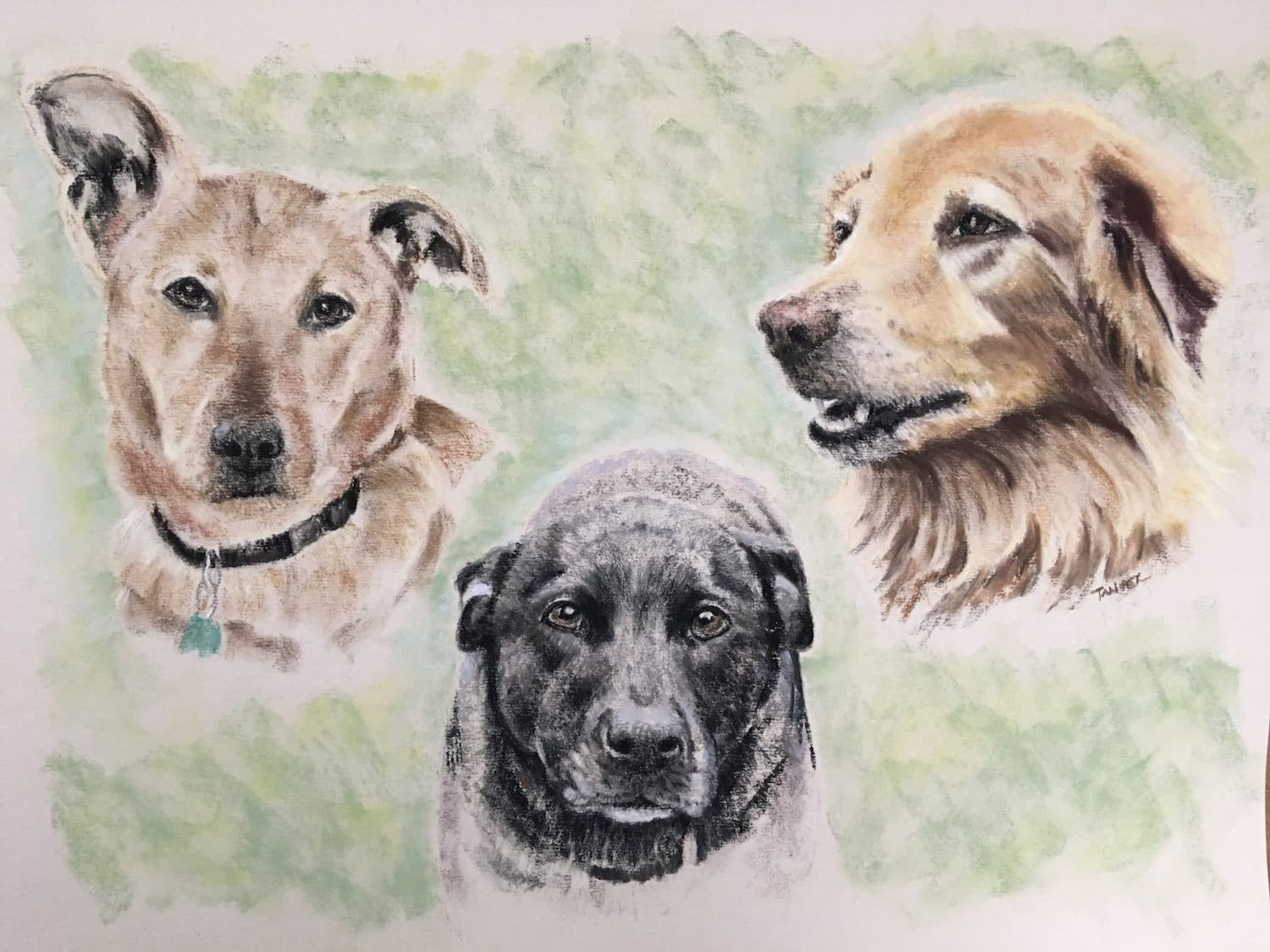 pastel of three dogs together with green background