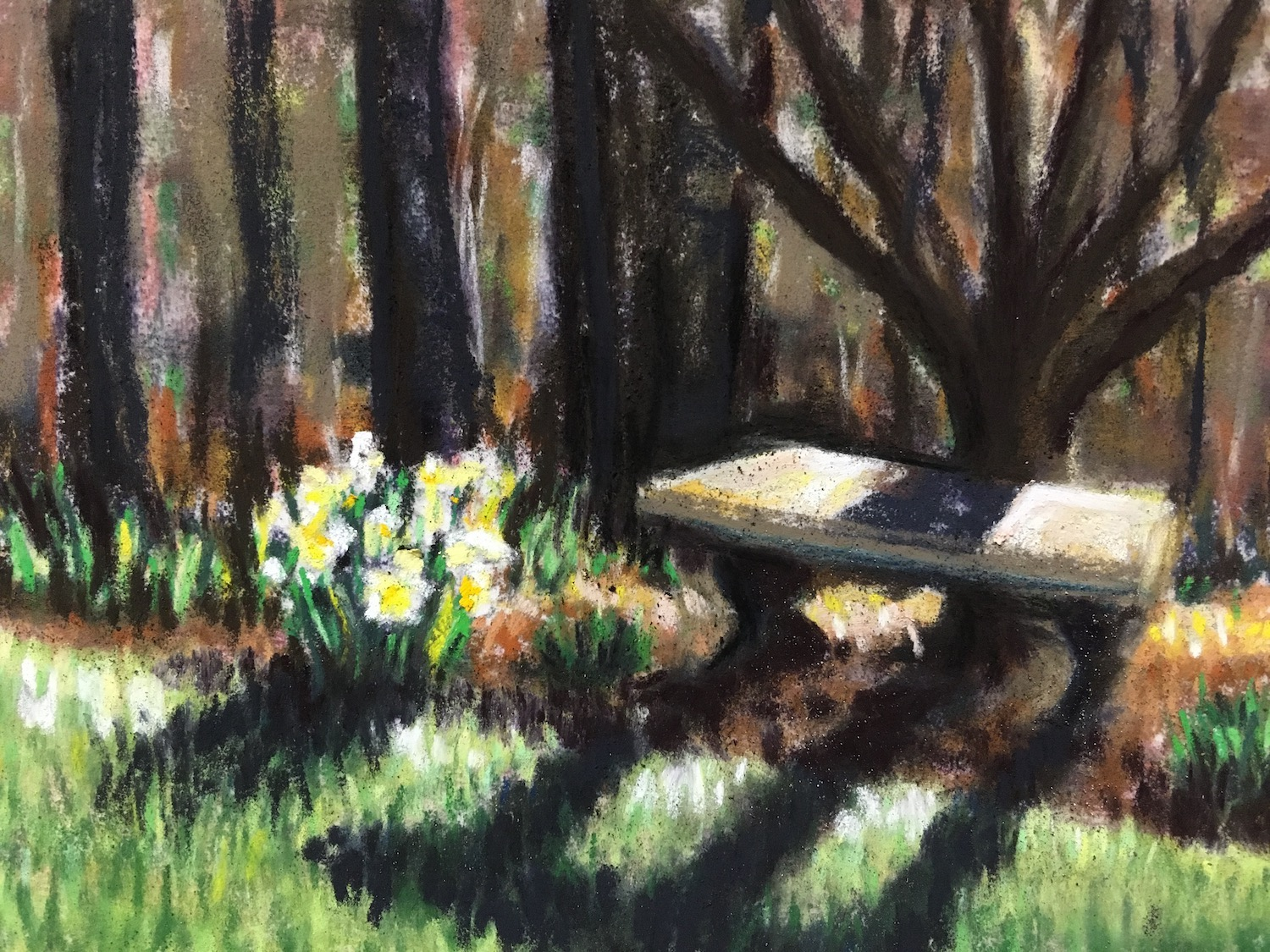 pastel of stone bench and daffodils under a tree in the spring